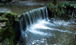 River Trent Pic