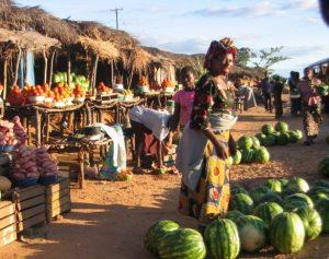 amazing facts about Zambia