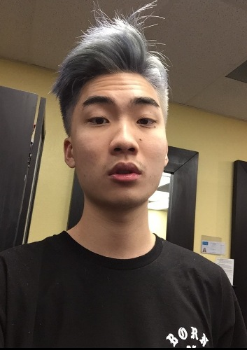 Facts about Ricegum