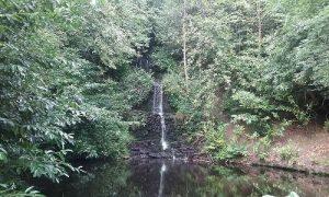 Tillingbourne Waterfall