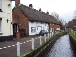 the River Meon Beauty