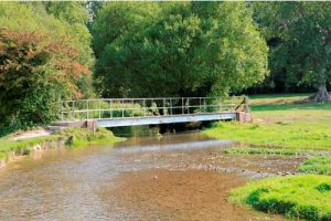 the River Meon Facts