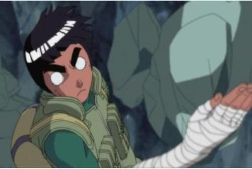 Facts about Rock Lee