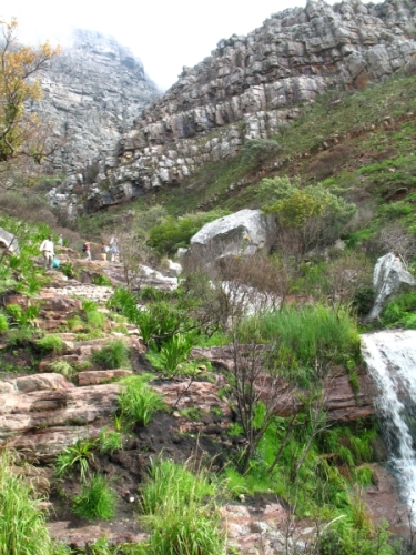 Table Mountain Facts