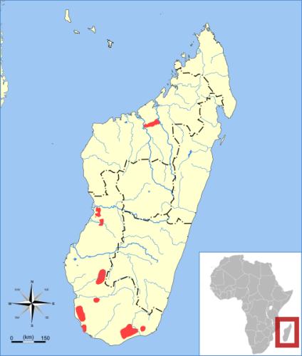 Tenrec Map