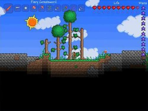 Terraria Facts
